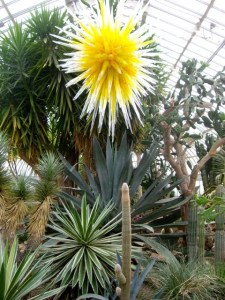 Pennsylvania: Phipps Conservatory
