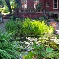It's garden tour season! AAA garden tours around Buffalo (and beyond)...