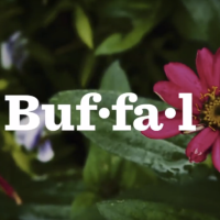 [Video] New Buffalo Garden Video!