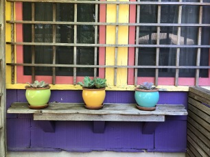 Love the colors on this rustic shelf attached to the house across from the Mermaid Garden.