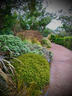 The walkway above the Walled Garden.