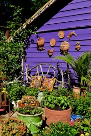The Salad Garden Bench and purple shed wall.