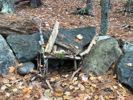 Fairy Houses in the forest.