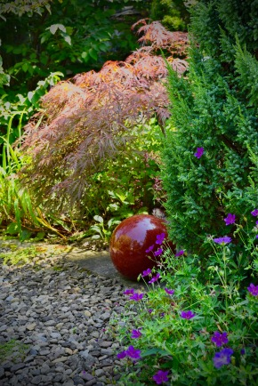 Nice color echoes from the glossy ball to the Japanese maple behind it.