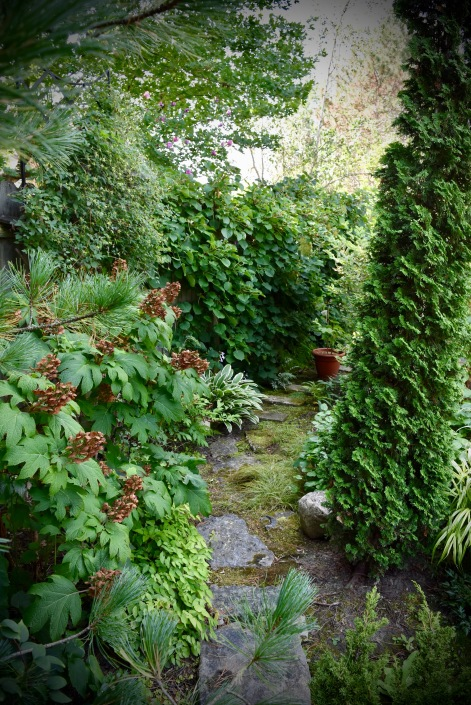 Trees and shrubs are as plentiful as the perennials.
