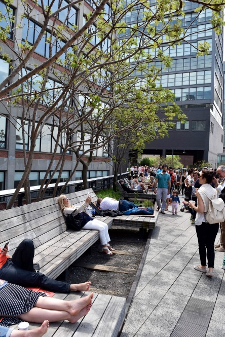 Wide benches and backs along th erailroad tracks at the High Line in NYC. Some of them even rolled on the old railroad tracks!