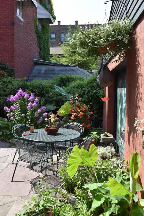 A sunny spot in a courtyard garden in Buffalo.