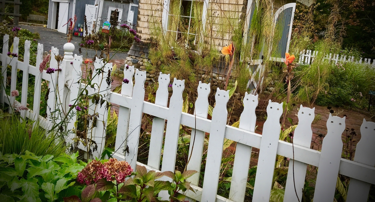 Fabulous Fence Finds