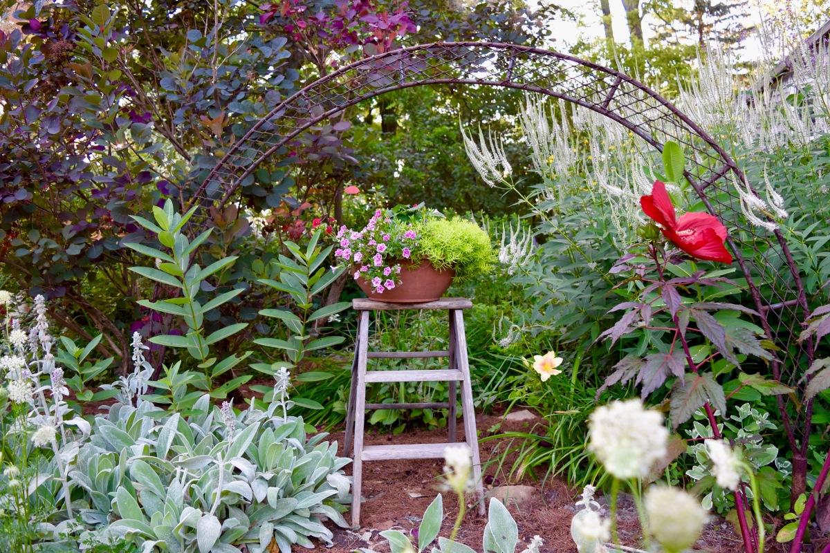The garden writer's garden