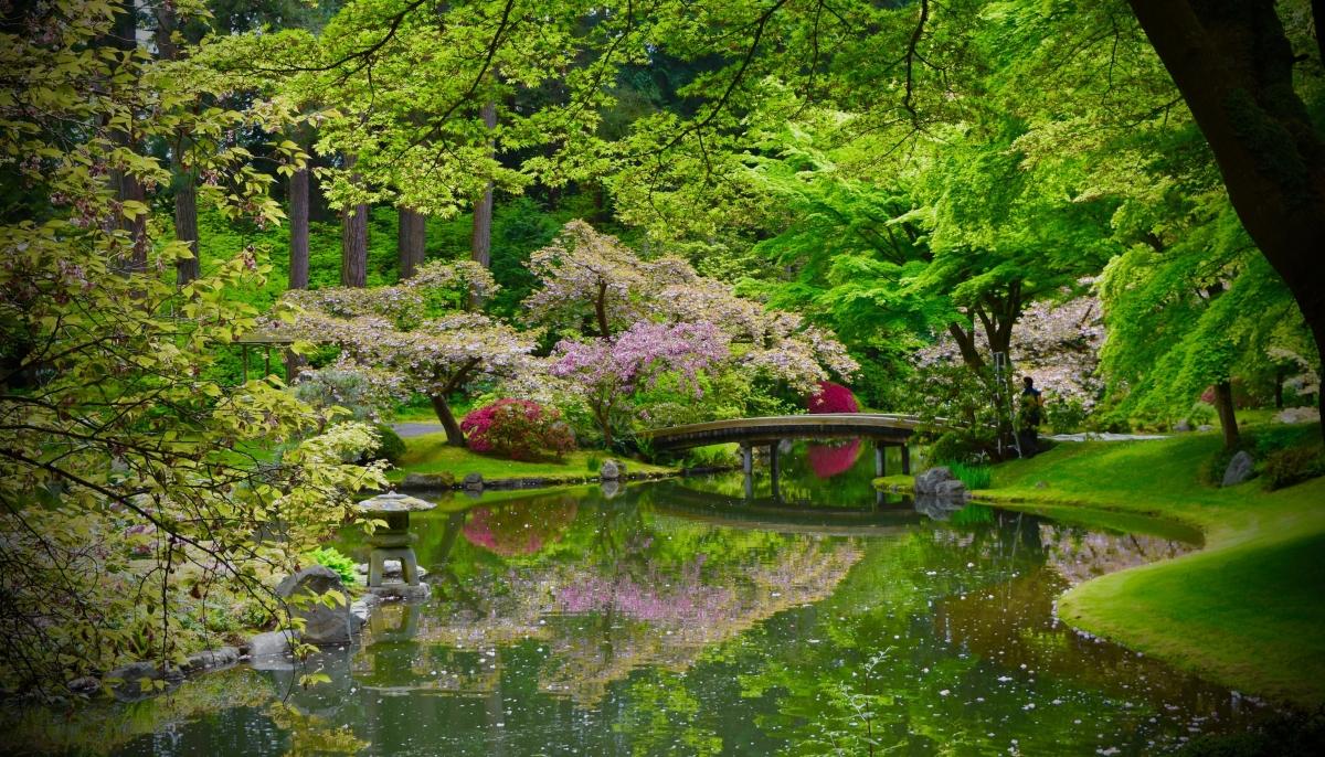 A garden with a peaceful easy feeling