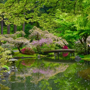 """It was overcast the day we were there, so the pond(s) looked a little murky. A sunny day may have had them more """"mirror-like."""""""