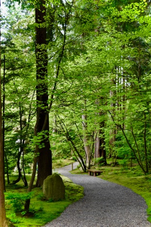 Our first choice of path was this one, it looked so inviting.