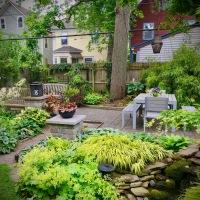 Modern, Asian-flavored garden before & after