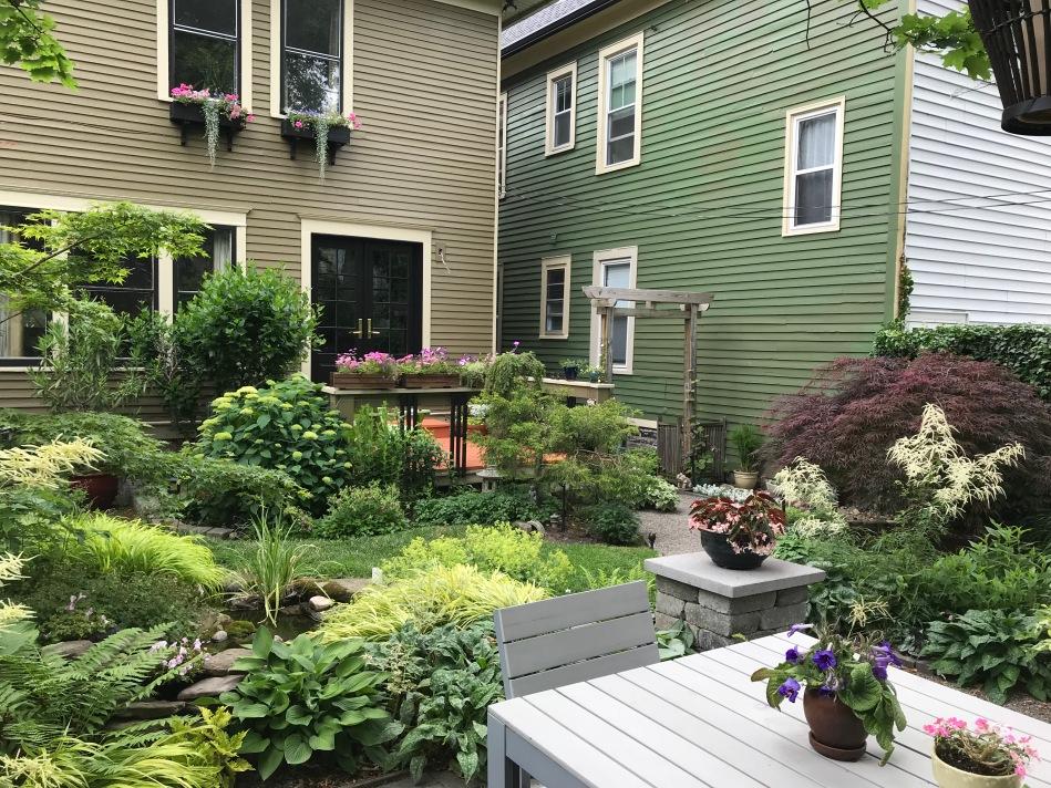 Buffalo garden before&after lancaster Avenue1