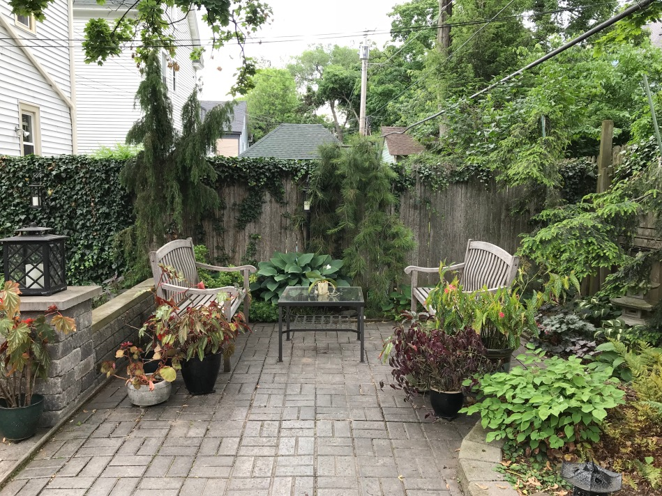 Buffalo garden before&after lancaster Avenue2