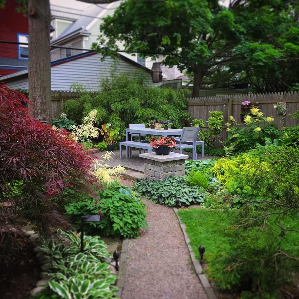 Buffalo garden before&after lancaster Avenue3