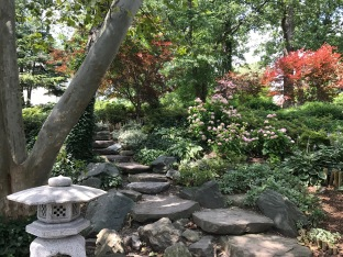 Natural stairs in Delaware PArk's Japanese Garden in Buffalo.