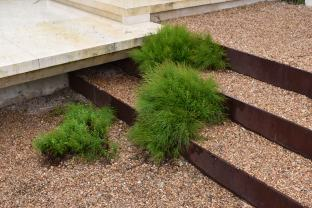 Modern corten steel and pea gravel planted steps in Austin, TX.