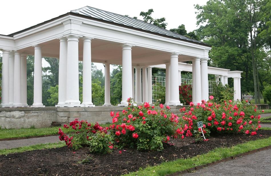 Rose Garden '08-9947