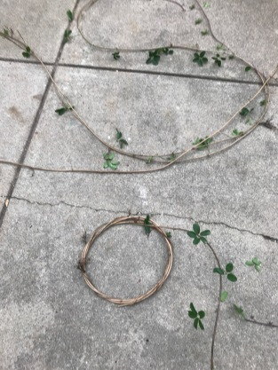 Wreath-making in October when the vines are pliable.