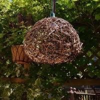 A home-made hanging light of vines