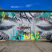 Buffalo's garden-inspired murals