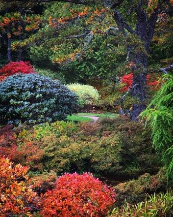 Ascatou Azalea Garden, Mt. Desert, Maine