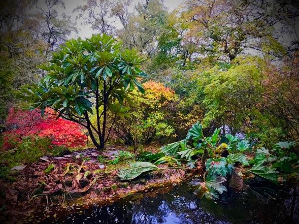 Inverewe Gardens, Poolewe, Scotland